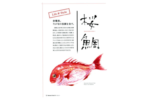 野村ファンド PR誌/イラストと文字 水彩 2013年